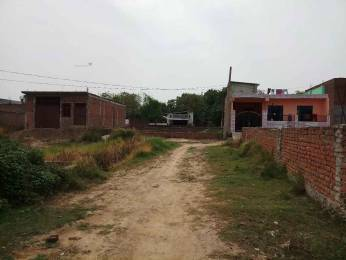 900 sqft, Plot in Builder Project Gangotri Nagar, Allahabad at Rs. 11.0000 Lacs