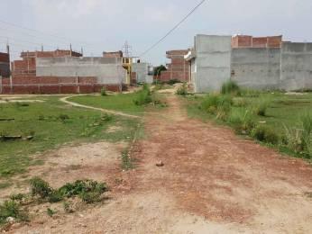 1250 sqft, Plot in Builder Project Naini, Allahabad at Rs. 16.6000 Lacs