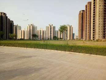 1280 sqft, 3 bhk Apartment in Jaypee Kosmos Sector 134, Noida at Rs. 11500