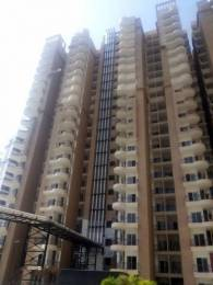 2195 sqft, 4 bhk Apartment in Ajnara Grand Heritage Sector 74, Noida at Rs. 98.7750 Lacs