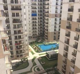 995 sqft, 2 bhk Apartment in JM Orchid Sector 76, Noida at Rs. 52.5250 Lacs