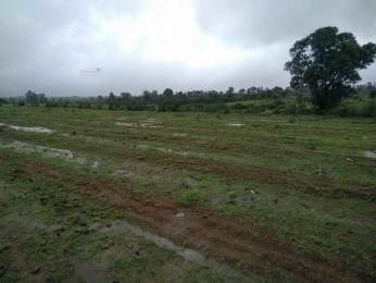 9000 sqft, Plot in Builder Project Talegaon Trimbak, Nashik at Rs. 15.0000 Lacs