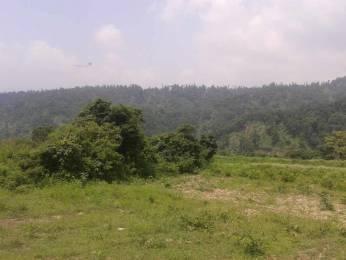 14463 sqft, Plot in Builder Project Sahastradhara Road, Dehradun at Rs. 4.8200 Cr