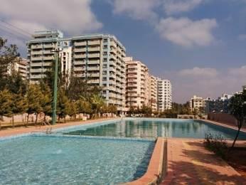 1240 sqft, 2 bhk Apartment in Corporate Suncity Apartments Bellandur, Bangalore at Rs. 82.0000 Lacs
