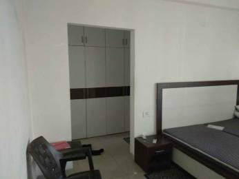 1350 sqft, 3 bhk Apartment in Builder Garden home zirakpur vip road, Chandigarh at Rs. 18000