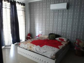 1690 sqft, 2 bhk Apartment in Builder Sushma Crecent Dhakoli Zirakpur, Chandigarh at Rs. 16000