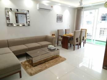 1650 sqft, 2 bhk Apartment in Builder shushma green vista Dhakoli Zirakpur, Chandigarh at Rs. 20000