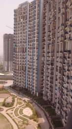 1125 sqft, 2 bhk Apartment in Amrapali Pan Oasis Sector 70, Noida at Rs. 15000