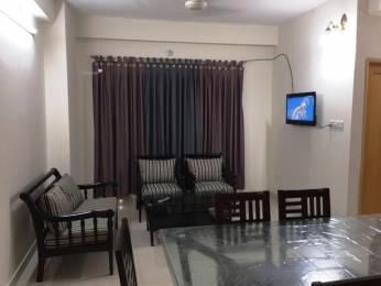 1100 sqft, 2 bhk Apartment in Royal Amol Heights Koregaon Park, Pune at Rs. 26000