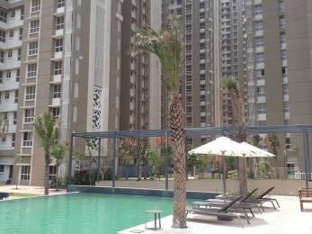 675 sqft, 1 bhk Apartment in Lodha Amara Tower 6 And 22 Thane West, Mumbai at Rs. 75.0000 Lacs