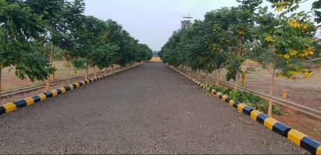 1620 sqft, Plot in Builder Peddapuram ADB Road, Kakinada at Rs. 9.9000 Lacs