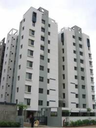 1575 sqft, 3 bhk Apartment in Builder Project Prahlad Nagar, Ahmedabad at Rs. 28000