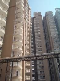 1075 sqft, 2 bhk Apartment in Ajnara Grand Heritage Sector 74, Noida at Rs. 55.9000 Lacs