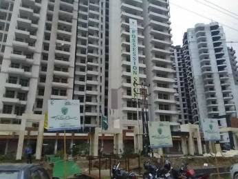 1090 sqft, 2 bhk Apartment in JKG Palm Court Knowledge Park, Greater Noida at Rs. 36.0000 Lacs