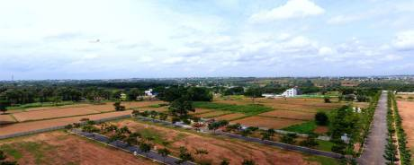 1500 sqft, Plot in Esther Eden Budigere Cross, Bangalore at Rs. 10.0000 Lacs
