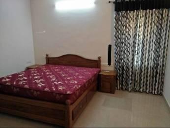 2500 sqft, 3 bhk Apartment in Builder Project Aluva, Kochi at Rs. 30000