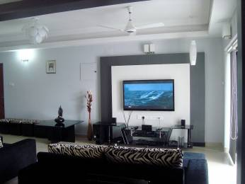 1600 sqft, 3 bhk Apartment in Builder Project Kakkanad Road, Kochi at Rs. 20000