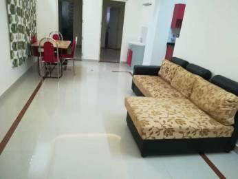 1500 sqft, 3 bhk Apartment in Builder Project Kakkanad Road, Kochi at Rs. 20000