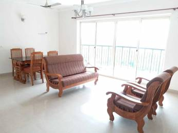 1800 sqft, 3 bhk Apartment in Builder Project Kakkanad, Kochi at Rs. 25000