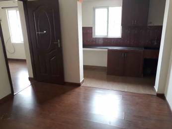 500 sqft, 1 bhk Apartment in Builder Project Adyar, Chennai at Rs. 15000