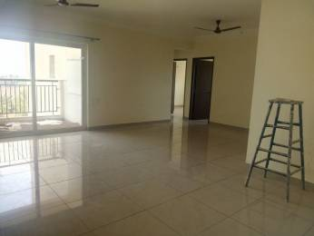 1820 sqft, 3 bhk Apartment in Prestige Tranquility Budigere Cross, Bangalore at Rs. 25000