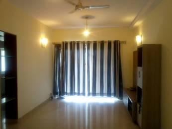 1800 sqft, 3 bhk Apartment in Chartered Beverly Hills Subramanyapura, Bangalore at Rs. 20000