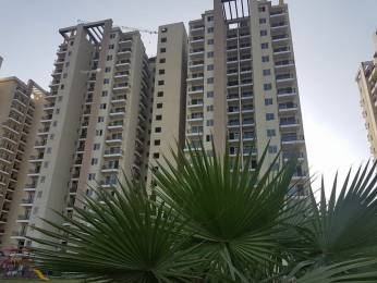 1220 sqft, 2 bhk Apartment in MGH MGH Mulberry County Sector 70, Faridabad at Rs. 43.6000 Lacs