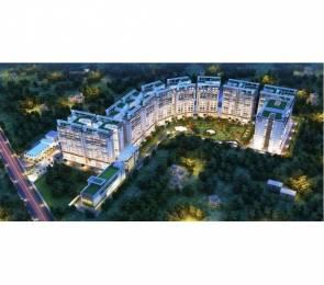 1906 sqft, 3 bhk Apartment in Maya Green Lotus Saksham Patiala Highway, Zirakpur at Rs. 79.9000 Lacs