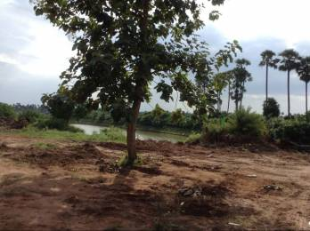 1503 sqft, Plot in Swathi Neeladhri Township Bhogapuram, Visakhapatnam at Rs. 11.2500 Lacs