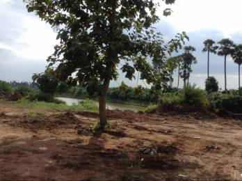 1494 sqft, Plot in Swathi Neeladhri Township Bhogapuram, Visakhapatnam at Rs. 10.7900 Lacs