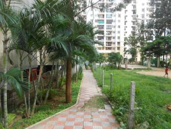 1675 sqft, 3 bhk Apartment in IBC Platinum City Yeshwantpur, Bangalore at Rs. 18000