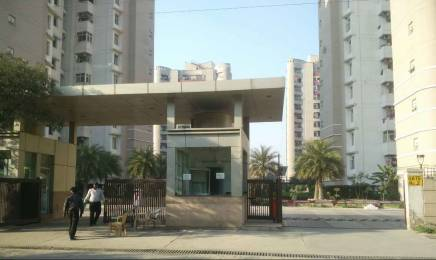 1935 sqft, 3 bhk Apartment in ABA ABA Olive County Sector 5 Vasundhara, Ghaziabad at Rs. 20000