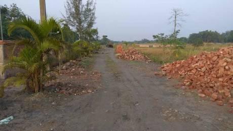 720 sqft, Plot in Builder Project Thakurpukur Bazar, Kolkata at Rs. 1.9000 Lacs