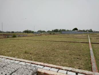 1000 sqft, Plot in Builder Project Rama Devi, Kanpur at Rs. 5.0000 Lacs