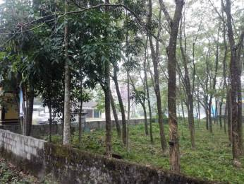 4300 sqft, Plot in Builder Commercial Place on the highway with accessibility from all 3 sides Chengannur Kozhippalam Karakkad Road, Alappuzha at Rs. 65.0000 Lacs