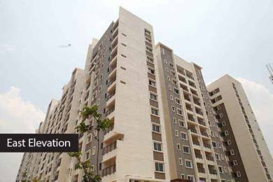 1850 sqft, 3 bhk Apartment in Builder luxury 3bhk flats for sale Mysore road Bangalore, Bangalore at Rs. 1.3375 Cr
