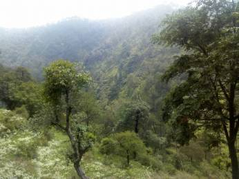 2200 sqft, Plot in Builder plot for sale Major District Road 9, Solan at Rs. 30.0000 Lacs