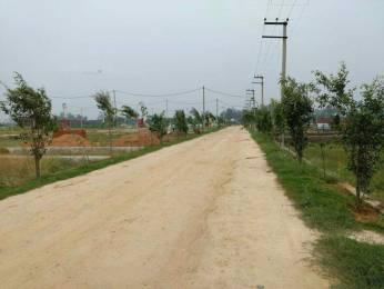 900 sqft, Plot in Builder cdr ecco green city Palwal, Faridabad at Rs. 6.0000 Lacs