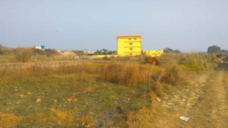 1000 sqft, Plot in Builder Project Taramandal, Gorakhpur at Rs. 9.7500 Lacs