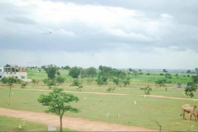 1485 sqft, Plot in Builder Natural Harvest Shadnagar, Hyderabad at Rs. 5.9000 Lacs