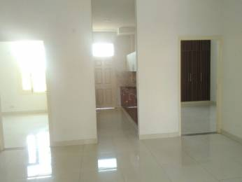 1800 sqft, 3 bhk BuilderFloor in Builder wave estates Road to Airport, Chandigarh at Rs. 43.0000 Lacs