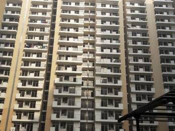 1365 sqft, 3 bhk Apartment in Builder Project Sector108 Noida, Noida at Rs. 45.0000 Lacs