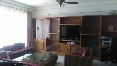 1520 sqft, 3 bhk Apartment in Skylark Esta ITPL, Bangalore at Rs. 45000
