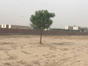 918 sqft, Plot in Builder Ashok Vihar Sector 7, Palwal at Rs. 13.8000 Lacs