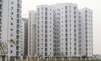 1576 sqft, 3 bhk Apartment in Piyush Heights Sector 89, Faridabad at Rs. 43.0000 Lacs