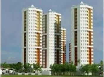 1430 sqft, 3 bhk Apartment in Builder Project Kakkanad, Kochi at Rs. 56.0000 Lacs