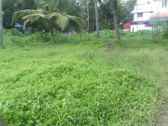 2621 sqft, Plot in Builder Project Eroor, Kochi at Rs. 45.0000 Lacs