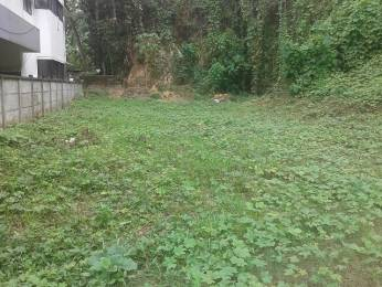 3702 sqft, Plot in Builder Project Mulanthuruthy, Kochi at Rs. 21.2500 Lacs