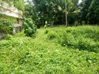 2003 sqft, Plot in Builder Project Mulanthuruthy, Kochi at Rs. 17.2500 Lacs