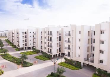 1508 sqft, 3 bhk Apartment in Jain Alpine Meadows Pammal, Chennai at Rs. 68.0000 Lacs